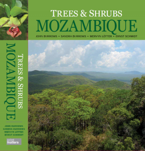 Mozambique tree book